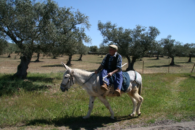 Estampa típica de algunos municipios de la Sierra como Encinasola.