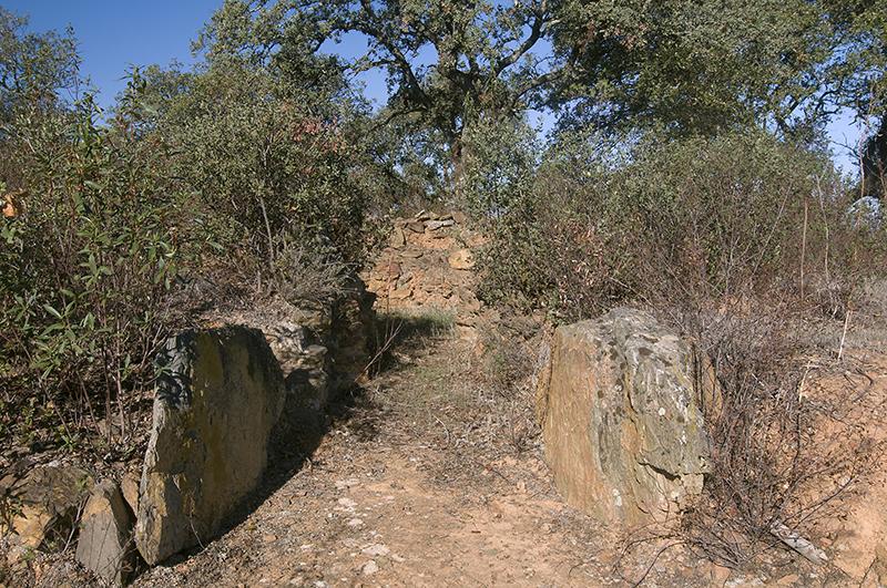 Tholos del yacimiento arqueológico la Zarcita. Santa Bárbara de Casa.