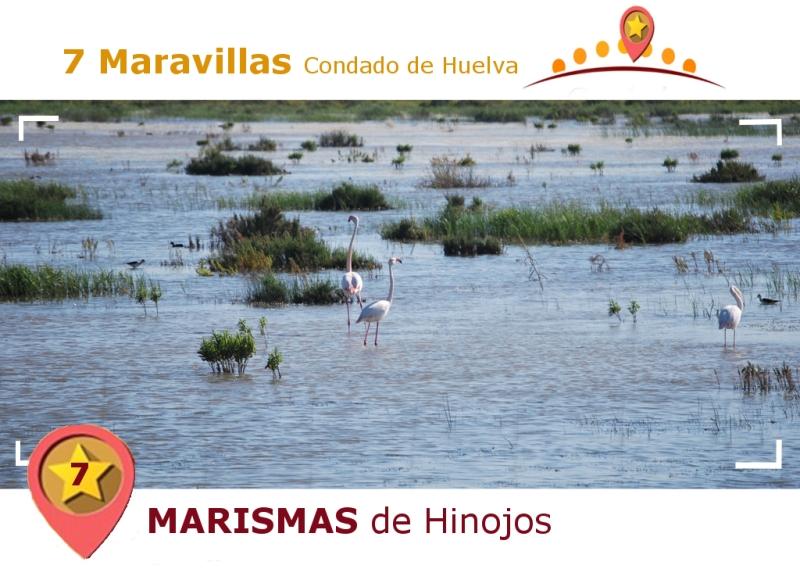 Marismas de Hinojos.