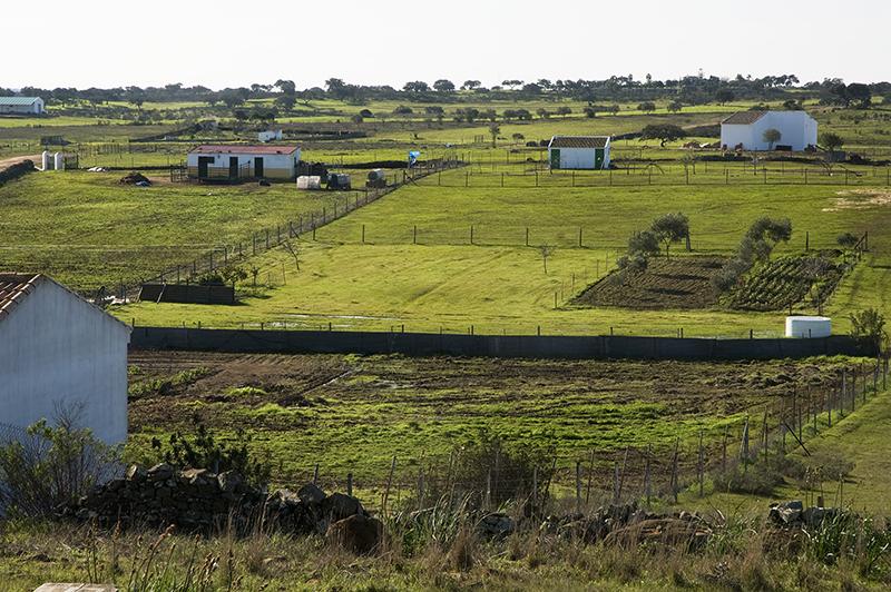 Paisaje del entorno de San Silvestre de Guzmán.