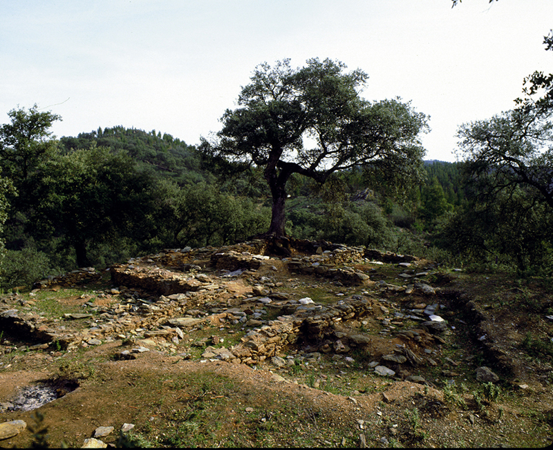 Poblado y necrópolis del Castañuelo.