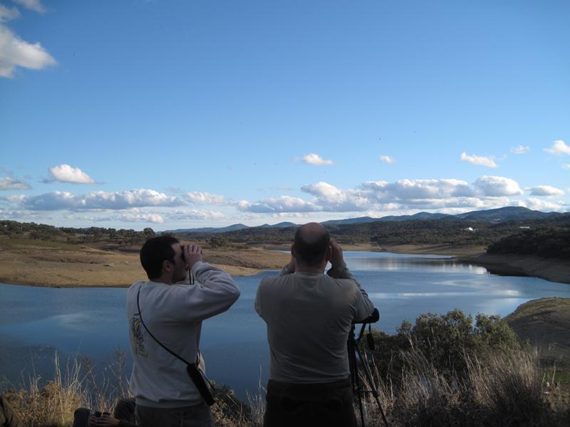 Cualquier lugar de la Sierra es un sitio ideal para el avistamiento de aves.